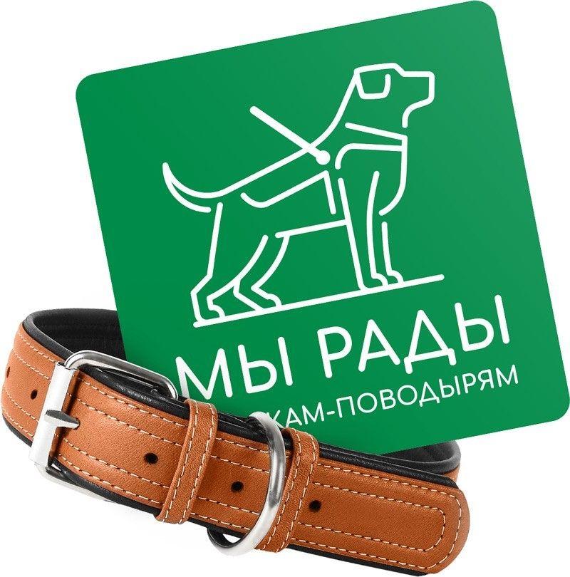 Логотип собаки-поводыри