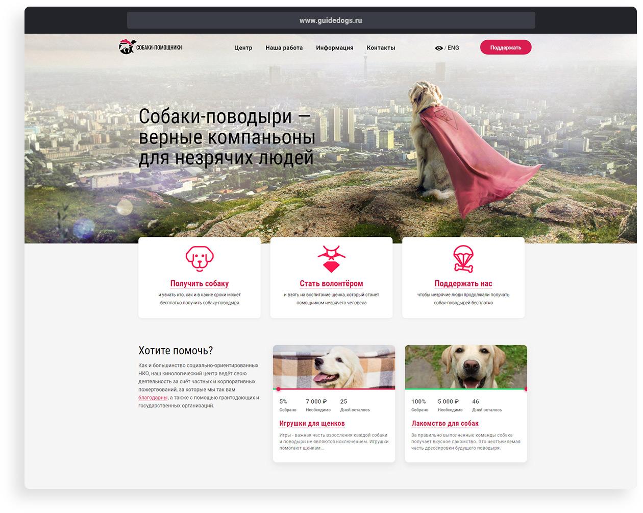 Разработка сайта для центра собак-поводырей