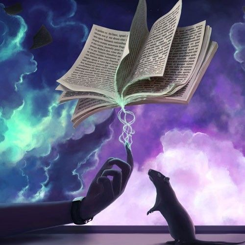 Постер «Magic Words»